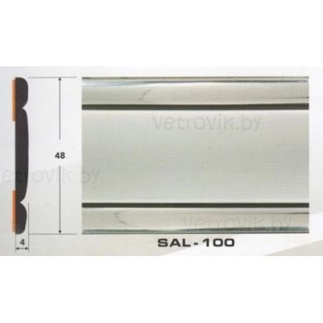 Молдинг автомобильный SAL/100 (48х4 мм.)(цена за 1 метр)